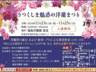 福島県で行われるらん展に参加します。