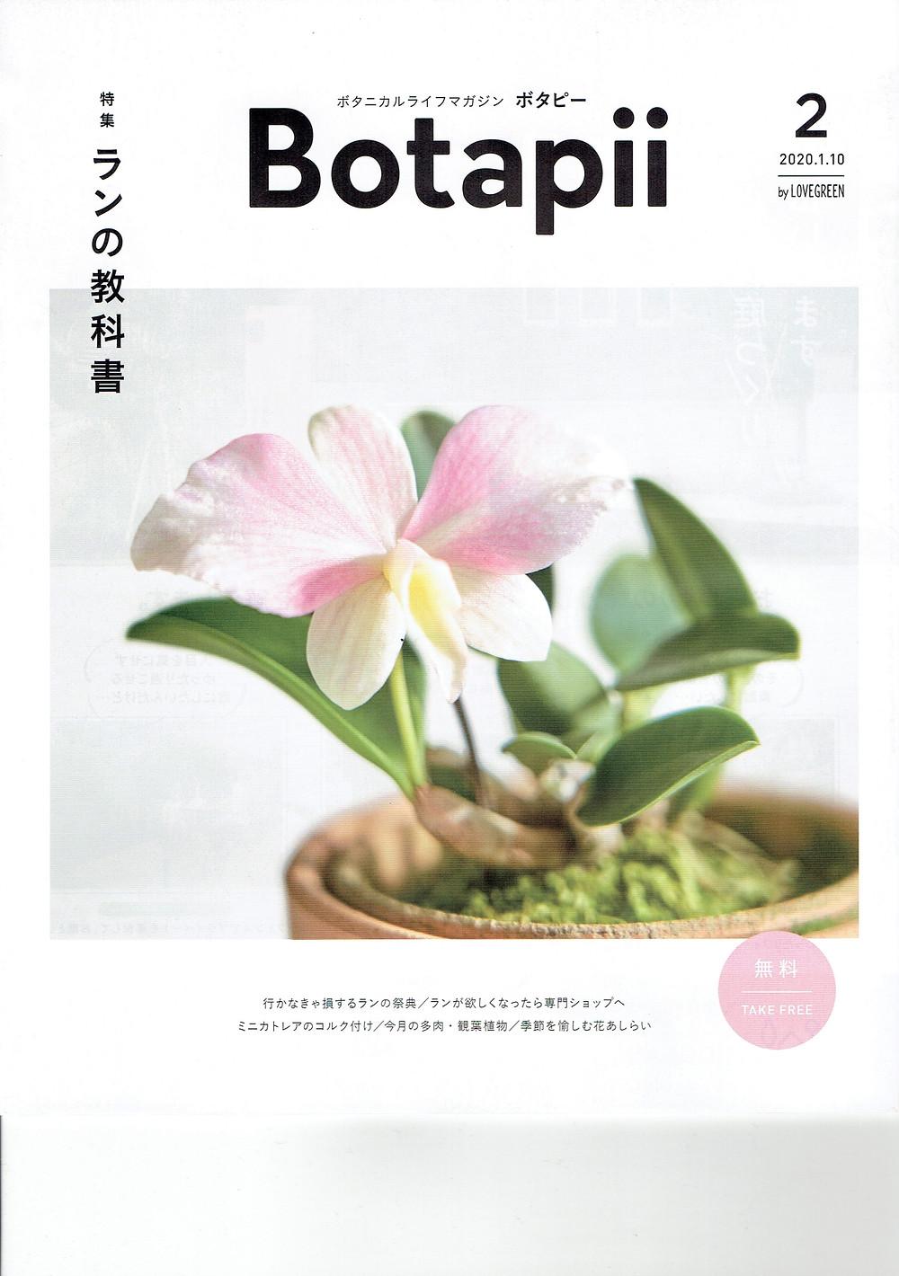 Botapii ボタピー 2月号