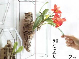 Botapii(ボタピー) 2月号 2019.1.10に中藤洋蘭園が掲載されました。