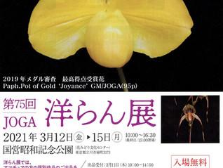 第75回JOGA 洋らん展 国営昭和記念公園