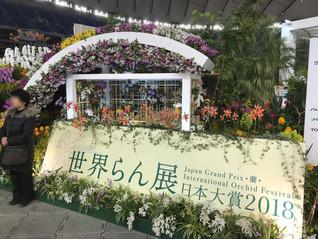 世界らん展日本大賞2018の写真を追加しました。We up new photos!