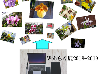 ★Webらん展2018-2019 開催します☆