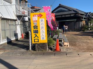 秋の洋らん展 in Fujiに出店 のご報告