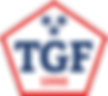 TGF-pentagon_2019_PMS-294-485-White.png