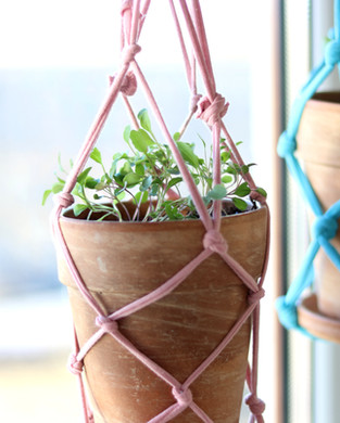 DIY, Pro & Garden 2019