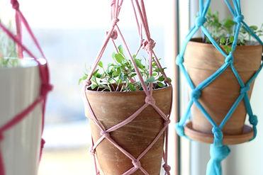 DIY Macrame Flowerpot Hangers