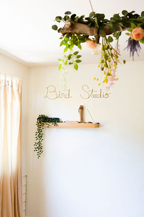 Indoor Classes at The Bird Studio Dowtown Mill valley