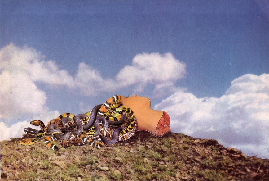 Head of Medusa, 2009