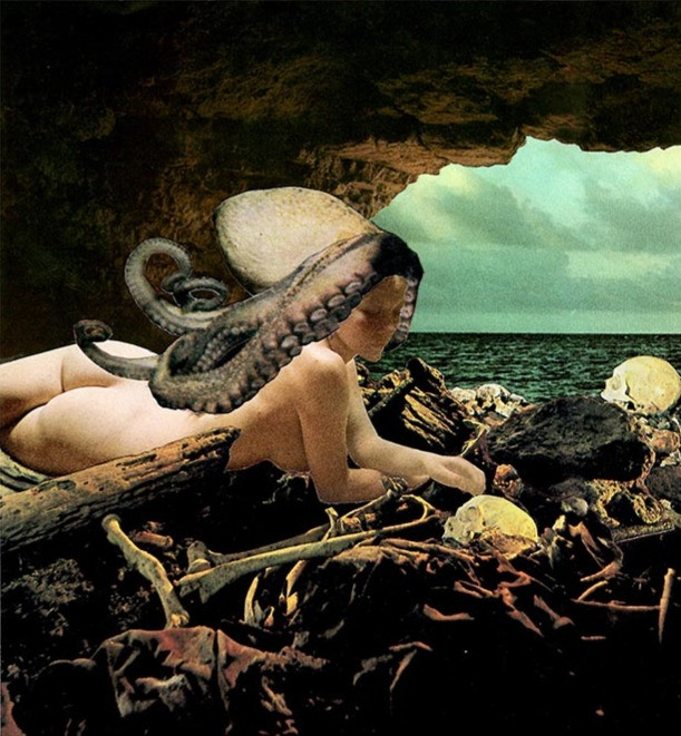The Octopusus's Liar, 2014