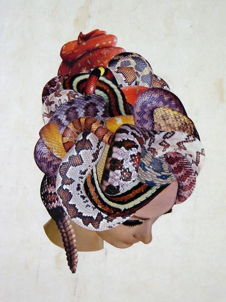 Medusa, 2008