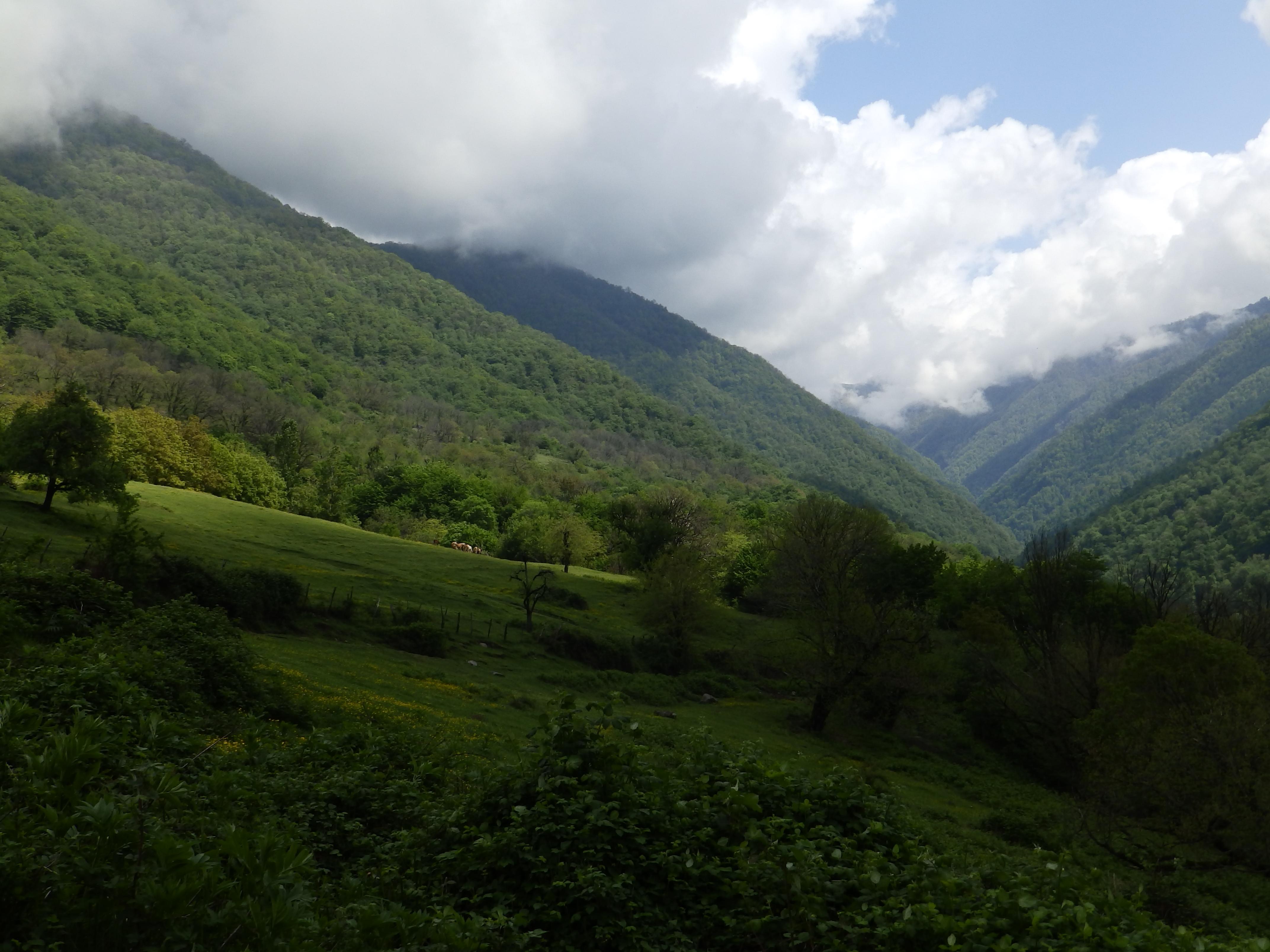 Azeri_LandscapesP4300060