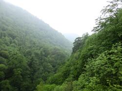 Azeri_Landscapesgreen_P4290008