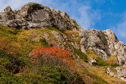 Georgia_LandscapesDSC_2015