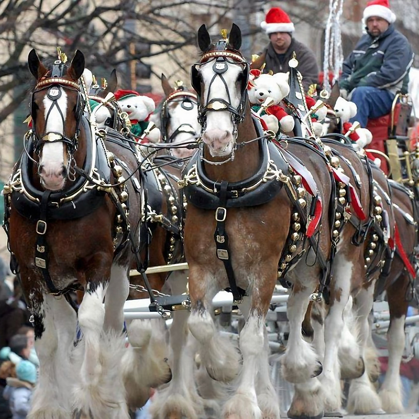 2020 Carriage Parade-CANCELLED