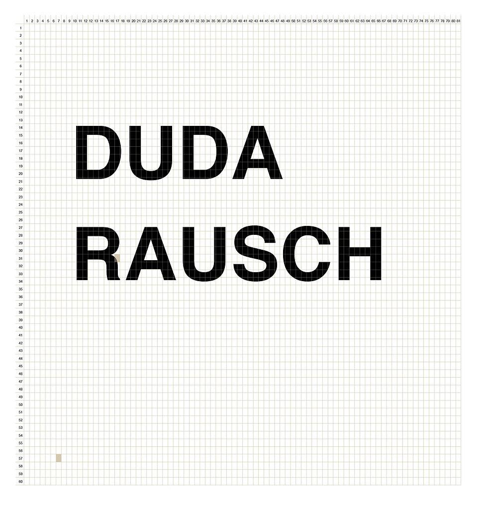 210308_DUDA_Rausch_Plane_Raster_sold.jpg