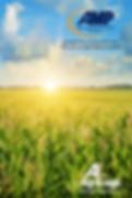 Federal Crop Insurance