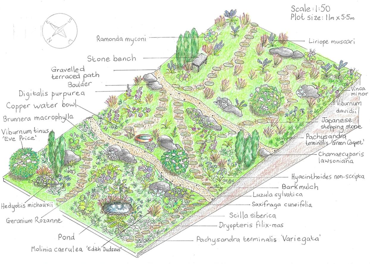 Shaded sloping garden
