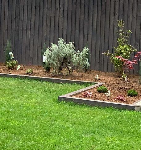 Contemporary rectangular garden