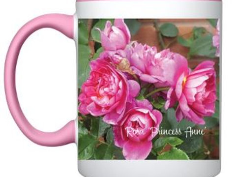 Botanical Rose 'Princess Anne' mug