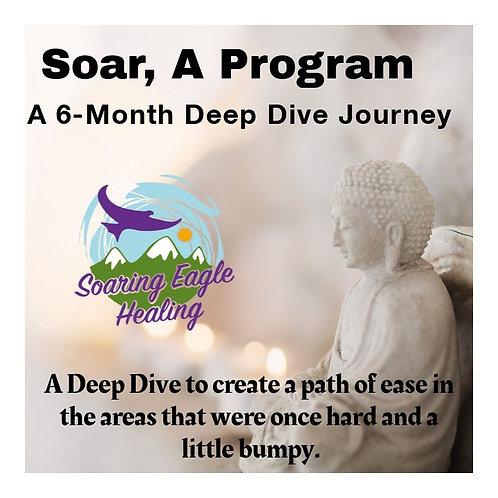 SOAR, A 6-Month Deep Dive Journey
