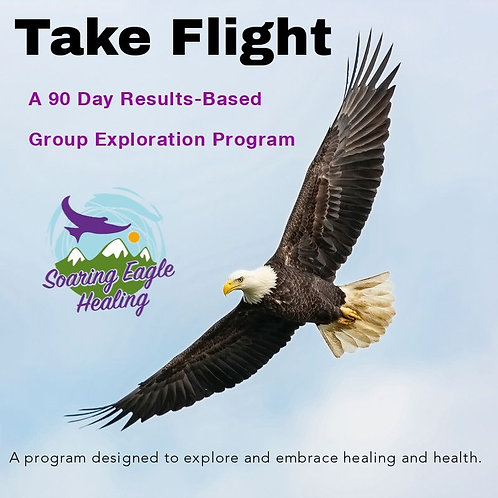 Take Flight, 90 Day Results-Based Group Exploration