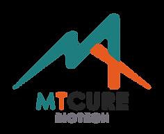 Capmi-Logo copy.png