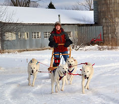 Photo of Dr. Baum Running sled dogs