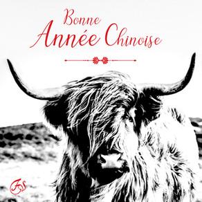 BONNE ANNÉE CHINOISE!