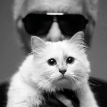 French Smile Choupette .JPG
