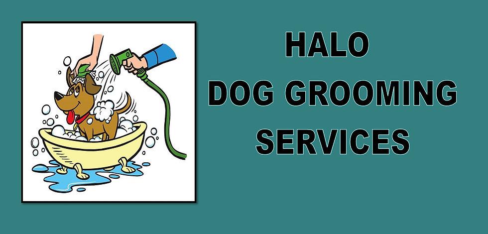 grooming_edited.jpg