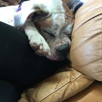 Ethel's squish sleepy face