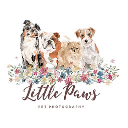 little paws logo.jpg