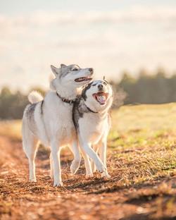 Best Friends ❤️_._._._._