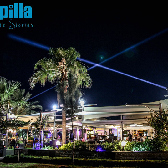 Gorilla Street Lighting & Photography
