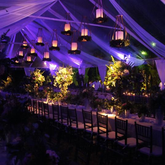 Gorilla Street Wedding Lighting