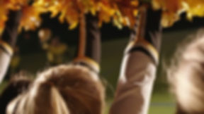 349220571-pompons-cheer-leading-cheerlea