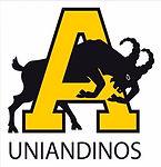 logo uniandinos_edited.jpg