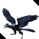 Tracheopteryx headshot.png