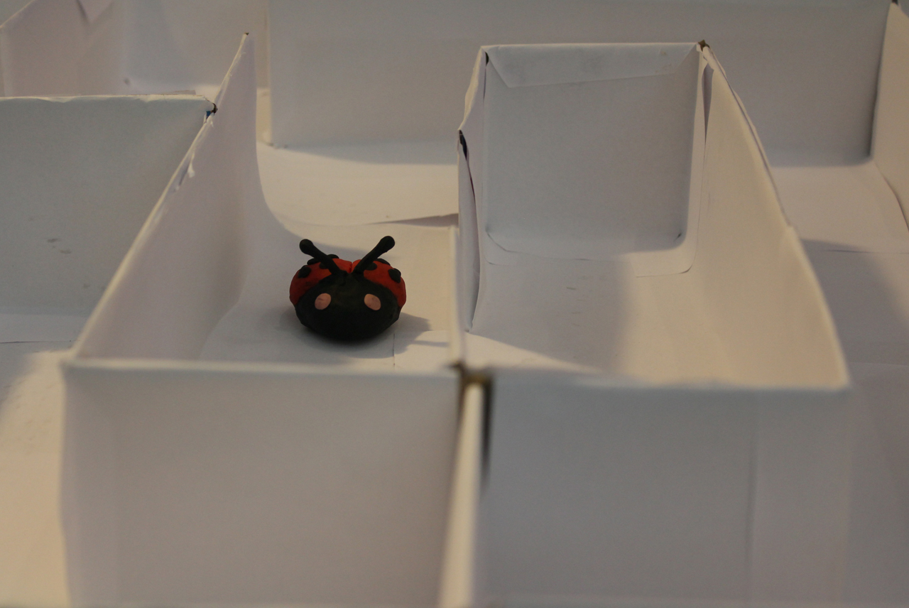 The Lady Bug (2010)