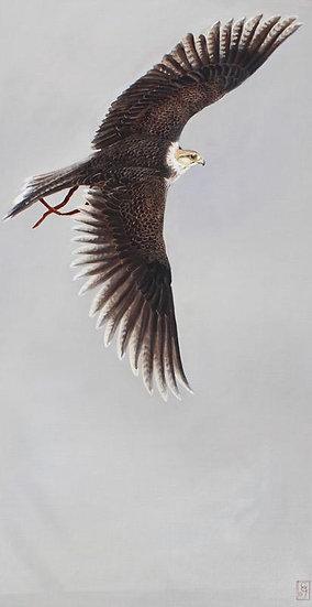 In Flight II