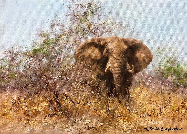 Emerging from the Bush, Painted in 1978