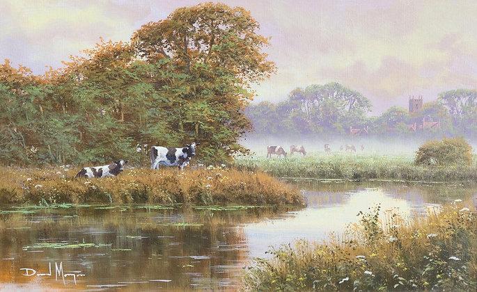 DAVID MORGAN | Cows by the Water's Edge