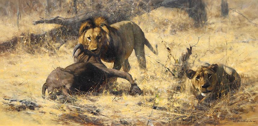 DAVID SHEPHERD | Lions with Buffalo Kill