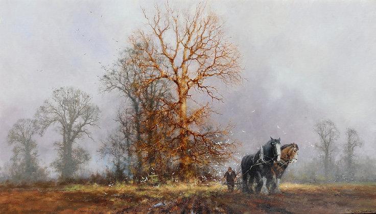 DAVID SHEPHERD | Ploughing