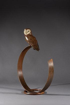 SIMON GUDGEON   Barn Owl