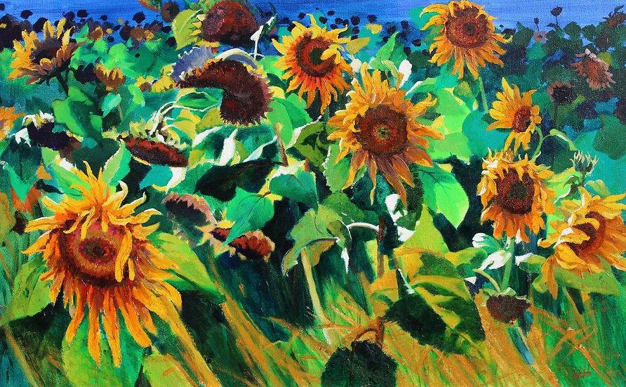 Suzy's Sunflowers