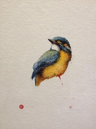 KARL MARTENS | Kingfisher