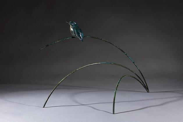 SIMON GUDGEON | Kingfisher