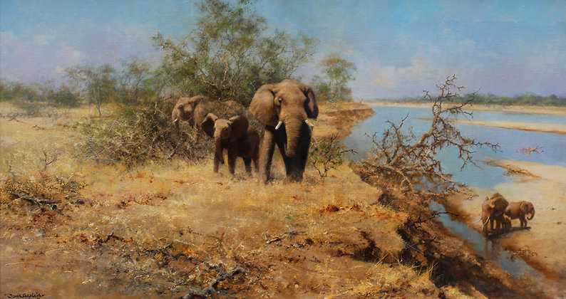 DAVID SHEPHERD | Elephants in the Bush, Luangwa Valley