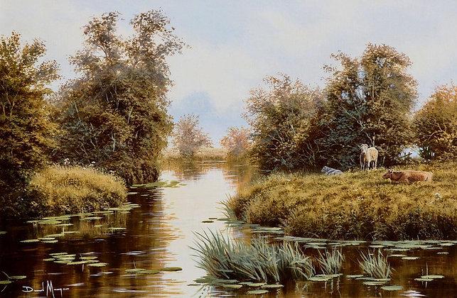 DAVID MORGAN | Cows by a River